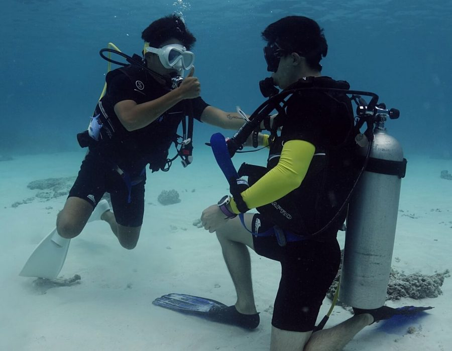 practice rescue skill contact with diver